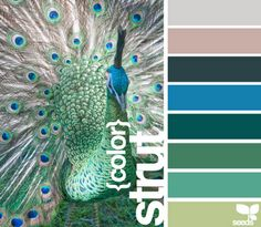 Peacock color scheme - peacocks strut because the cannot fly Peacock Color Scheme, Peacock Colors, Colour Schemes, Color Combos, Peacock Art, Peacock Feathers, Teal Colors, Room Colors, Neutral Colors