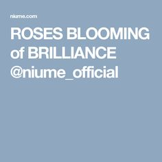 ROSES BLOOMING of BRILLIANCE @niume_official