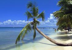 Il est difficile de ne pas trouver une plage qui n'est pas une parfaite carte postale en République dominicaine!