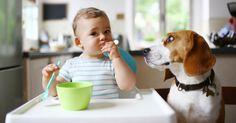 #Les femmes ayant un chien auraient des bébés en meilleure santé - Terrafemina: Santé sur le net Les femmes ayant un chien auraient des…