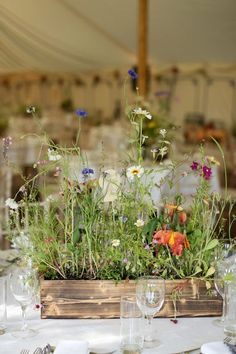 potted wildflowers for a cute centerpiece