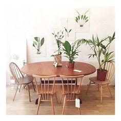 Hay días en los que nos proponemos hacer fotos de producto...limpias, sencillas, blanquitas...pero empezamos a poner a quitar, a poner, a poner un poco mas, un poco de verde aquí, un poco de verde allá...y nos salen brotes hasta de la cabeza!!!!!! Nos pueden las plantitas!! Podéis encontrar esta mesa de teca, original de los años 60 ya en la web!!! Es una pasada, y encima extensible a 2,08m para esas cenas multitudinarias que tanto nos gustan!! Buenas noches a todos!...
