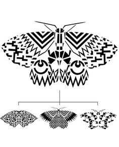 zeroh's Hastings Moth Project, working with Hastings Borough Council to bring clean graffiti geometric prints of Sussex moths to the streets of the borough.