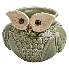 Verde Owl Planter - so cute!