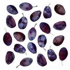 prune plums • tennyson tippy