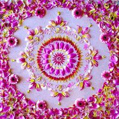 Flower Mandala                                                                                                                                                                                 More
