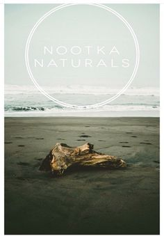 Nootka Naturals Beach, Water, Movies, Movie Posters, Outdoor, Gripe Water, Outdoors, Film Poster, Seaside