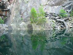 Trees, lake