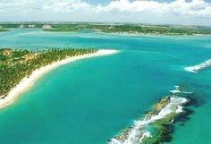 Praia do Gunga - Alagoas - Brasil