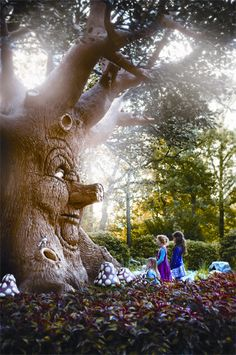 Attractiepark Efteling in Kaatsheuvel in the Netherlands. Fairy Land, Fairy Tales, Sci Fi Books, Dutch Artists, Adventure Is Out There, Amusement Park, Beautiful World, Ultimate Travel, Family Travel