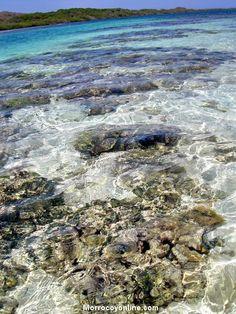 Disfrute de bañarse en las playas de Morrocoy