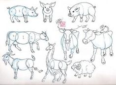 """Draw Pig Cow Goat and Sheep by ~Diana-Huang on deviantART (""""oink!"""")"""