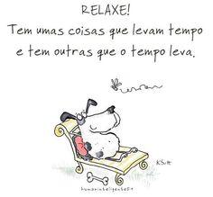 <3 <3 <3 #petmeupet #cachorro #gato #amoanimais #fimdesemana