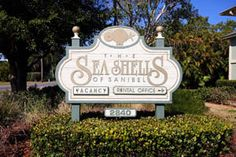 Seashells of Sanibel for sale