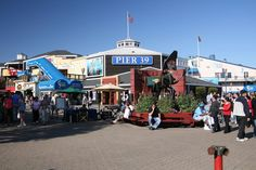 Pier 39, San Francisco. Spent many a weekend here during highschool.