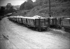 All About Standard Gauge Toy Trains Heritage Railway, Third Rail, Steam Railway, Standard Gauge, Felder, Best Model, Model Building, Model Trains, Locomotive