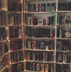 Think Positive — hardcoverlust: I put Christmas lights on my...