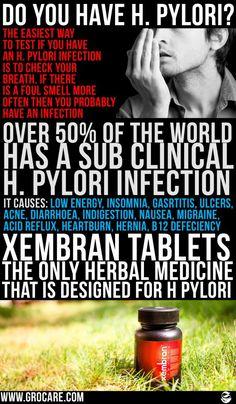 H Pylori Treatment - The Ultimate Regimen For H Pylori | Grocare