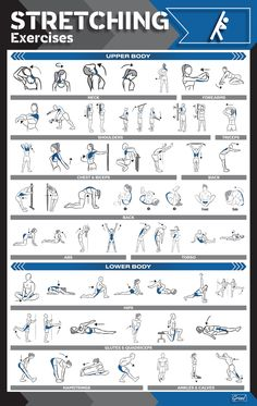 Home Gym Exercises, At Home Workouts, Fitness Exercises, Gym Workout Chart, Gym Workout Tips, Calisthenics Workout, Dumbbell Workout, Physical Fitness, Yoga Fitness