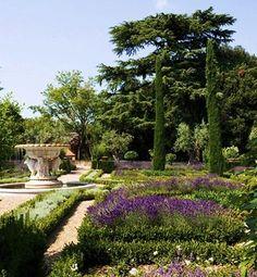 sting's-garden-design-lavender
