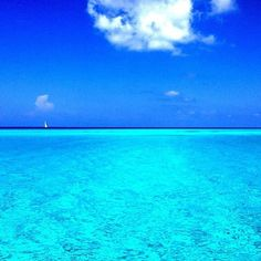 Bimini, Bahamas... cant wait to be here in a few monthssssssssssss. Ahhhh!