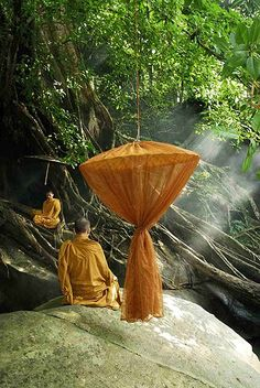 Thai Monks In Natural Meditation