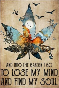 Dnstyles - Cannabis and into the garden i go to lose my mind and find my soul poster Marijuana Facts, Stoner Art, Thing 1, Lose My Mind, Cool Posters, Losing Me, Cool Art, Mindfulness, Gardens
