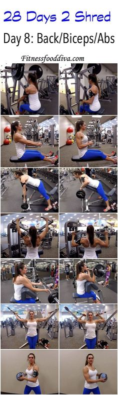 Day 8: Back/Biceps/Abs workout/video: