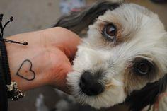 catu Doggies, Photography, Animals, Little Puppies, Photograph, Animales, Animaux, Pet Dogs, Fotografie