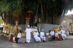Holy banyan tree at lembongan village, Bali
