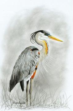 blue heron bird drawing - Google Search