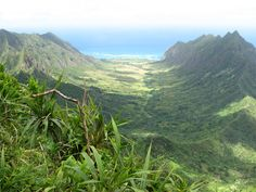 Kaaawa Valley, Oahu.  Hawaiian Royalty used to live here.