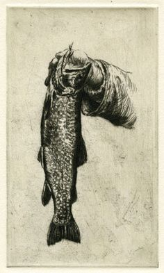 Brook Trout,Original Etching, Limited Edition 6/70 11 1/2 x 14 inches, framed size black frame