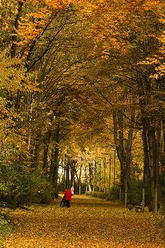 Tiergarten Park, Berlin, Germany…