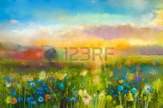 campos de flores: Petróleo flores pintura diente de león, aciano, margarita en campos. Sunset paisaje prado con flores silvestres, la colina y el cielo de color naranja y azul de fondo de color. Mano de pintura verano estilo impresionista floral