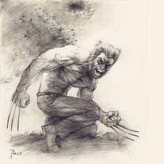 """Mi piace"": 66, commenti: 1 - Richard Pace (@richard_pace) su Instagram: ""#wolverine #commission #pencildrawing #graphite #tonal #artwork #drawing #art #marvel #marvelcomics…"""