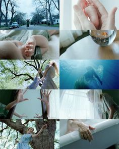 Terrence Malick, montage