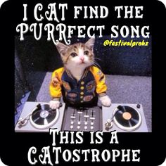 DJ kitten plays all the hits and smooth tracks for your pleasure - Cat memes - kitty cat humor funny joke gato chat captions feline laugh dress up Funny Cats, Funny Animals, Cute Animals, Funny Humor, Crazy Cat Lady, Crazy Cats, Cool Cats, Dj Kitty, Happy Kitty