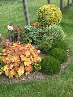 Fairy, Plants, Gardens, Small City Garden, Plant, Planets, Angel