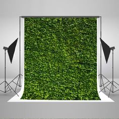 Green Grass Wall Photography Backdrops Newborn Baby Photo Backgrounds for Wedding or Children Backdrop Studio - Holiday Spring Photography, Scenery Photography, Background For Photography, Photography Backdrops, Food Photography, Halloween Photography, Photography Tricks, Photography Studios, Photography Marketing