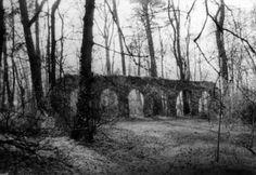 Tempelberg (Haselberg) – Veikkos-archiv