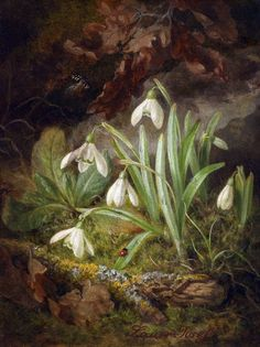 """thewriterofthewoods:  """"Forest Floor Piece with Snowdrops by Josef Lauer  """""""