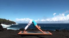 Vinyasa Flow Yoga Class for Beginners. (Good pace for beginners or anyone out of practice like me. )