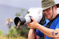 E' incredibile la confidenza che hanno gli animali alle Galapagos!  It's incredible the confidence of the animals at the Galapagos #ilpiaceredelviaggio #galapagos #ecuador #isole #isand #isabelaisland #santacruzisland #sancristobalisand #travel #viaggi #natura #adventure #nature #viaggiavventura #ecoturismo #sudamerica #ecoturismo #turismoresponsabile #animal  #animali #bird #uccelli
