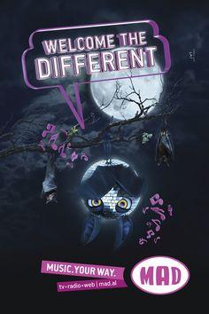 MAD | Bats Albania, Bats, Illustration, Movie Posters, Film Poster, Illustrations, Billboard, Film Posters