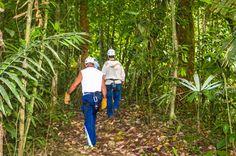 hiking to the next cable osa palmas canopy tour  Las Palmas, near Puerto Jimenez Osa Peninsula #fun #zipline #costarica