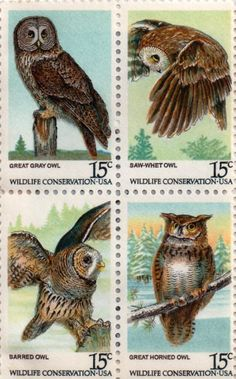 US postage stamp, 15 cent. Great Gray Owl, Saw-Whet Owl, Barred Owl, Great Horned Owl. Wildlife Conservation. Issued 1978. Scott catalog 1760 to 1763.