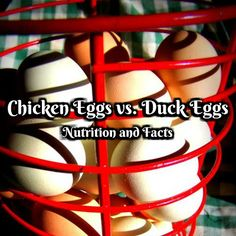 Chicken Eggs vs. Duck Eggs