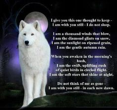 A wolf is one of many spirit guides. The wolf is an amazing creature. I have a few a wolf is one of them and a lion depends on the need and an eagle Wolf Poem, Lone Wolf Quotes, Wolf Qoutes, Timberwolf, Wolf Spirit Animal, Animal Spirit Guides, Pomes, Native American Quotes, Native Quotes