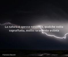 Quote by Francesco Bacone #quotes #quote #aforismi #nature #natura #flowers #citazioni #naturequotes #Francesco #Bacone #FancescoBacone